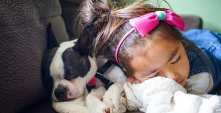Best dog breeds for children blog NewDoggy.com
