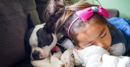 Best dog breeds for children blog NewDoggy.com