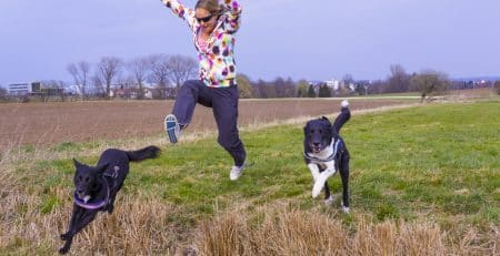 Best breeds for an active lifestyle NewDoggy.com