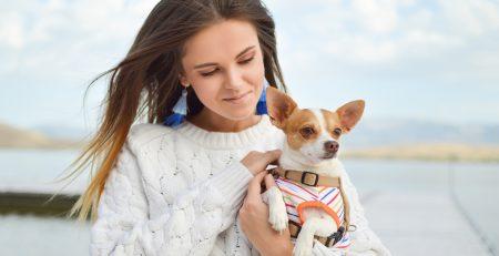 Best dogs for women blog NewDoggy.com